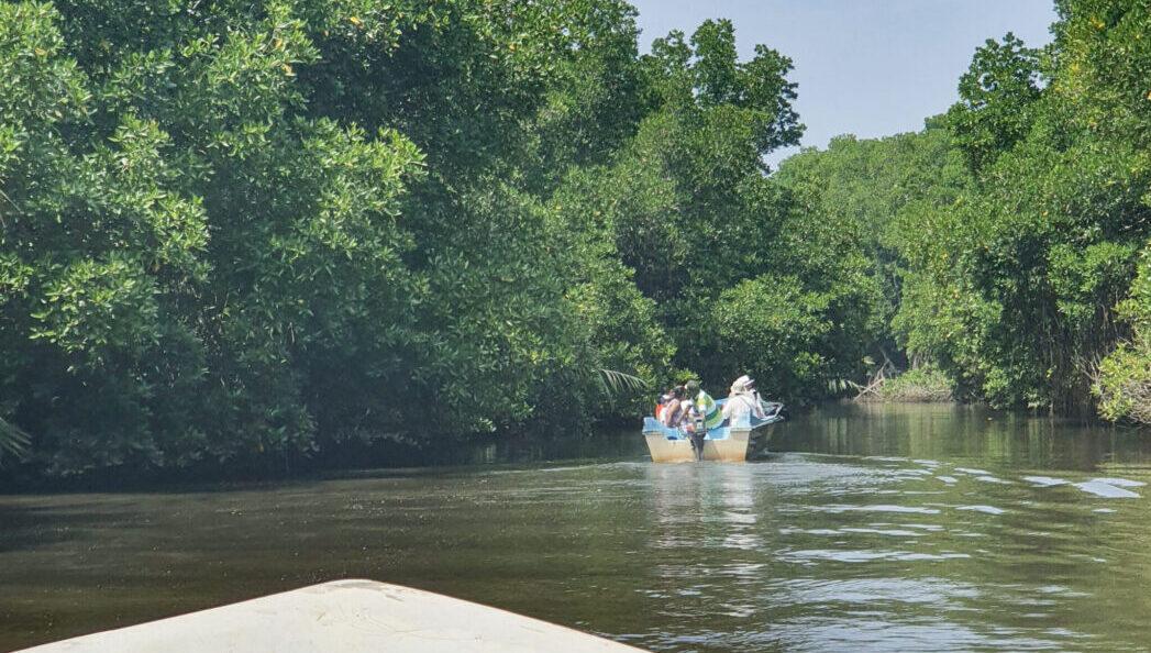 Сафари по реке Бентота