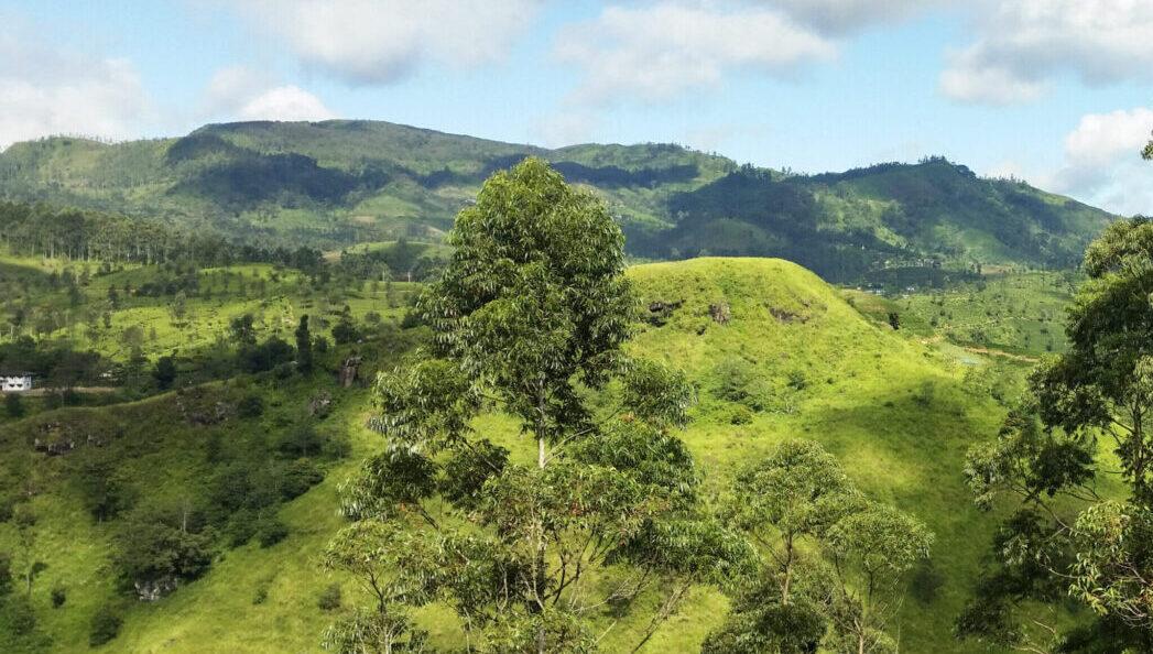 Горные пейзажи в районе Нувара-Элии