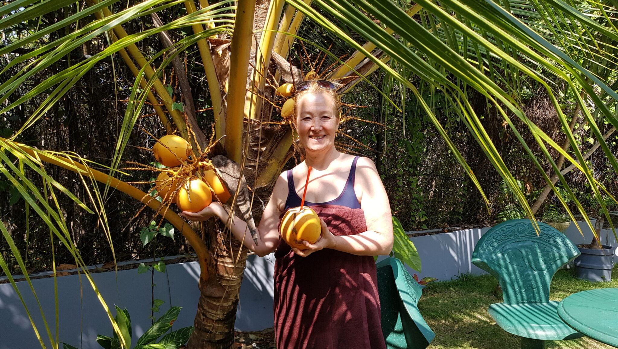 королевские кокосы в нашем саду